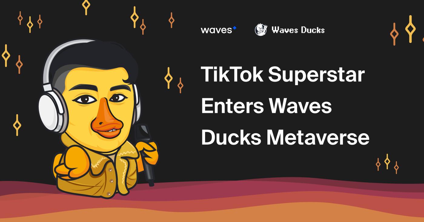 TikTok Superstar Enters The Waves Ducks Metaverse